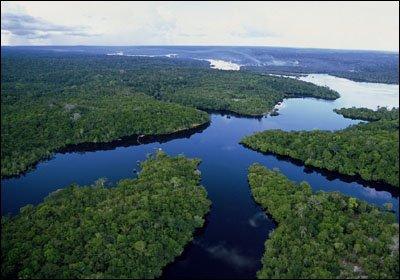 foresta amazzonica brasiliana